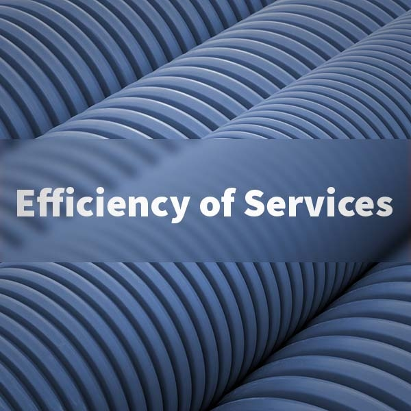 Efficiency of Services